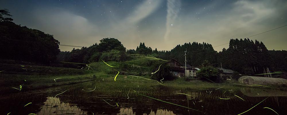 夜スライダー3